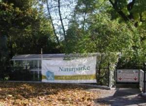 NÖNupsRathauspark2002